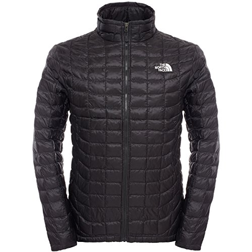 plumas ligero the north face
